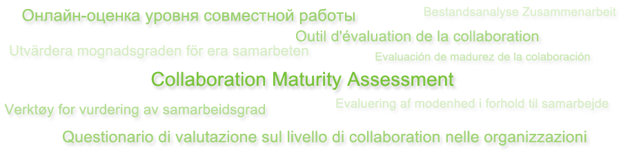 Collaboration Maturity Assessment